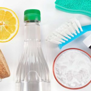 Vinegar cleaning items