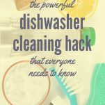 Dishwasher Cleaning Hack Pinterest Pin