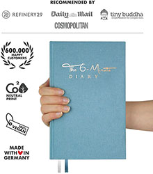 The 6 Minute Diary
