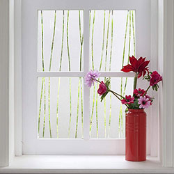Window Film for Privacy and Light Protection